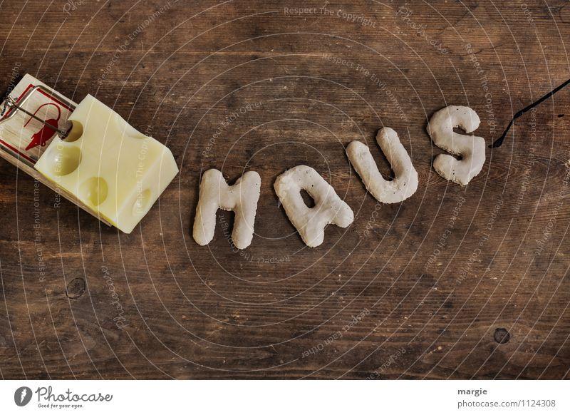 Die Buchstaben MAUS vor einer Mausefalle mit Käse Tier Hinterhalt Fallensteller 1 festhalten Fressen braun gelb Angst gefährlich Stress Misstrauen gefräßig