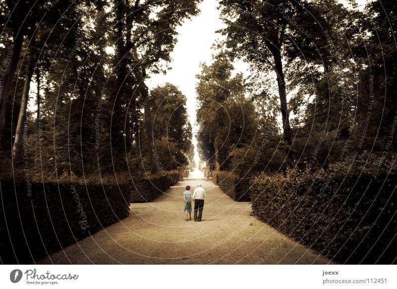 Into the Light alt losgehen Eingang Frau Freizeit & Hobby entgegengesetzt Zusammensein geradeaus Herr Hoffnung Flur langsam Tod Lebenslauf Licht Lichteinfall