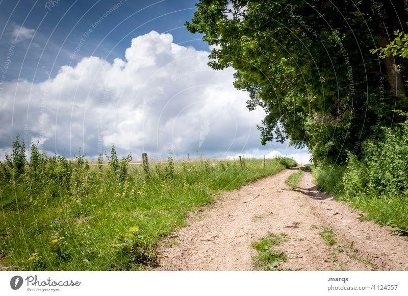 Ausflug Sommer wandern Umwelt Natur Landschaft Himmel Wolken Horizont Schönes Wetter Pflanze Baum Wege & Pfade Erholung einfach Stimmung Farbfoto Außenaufnahme