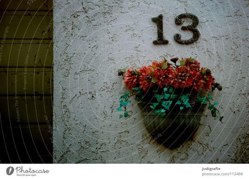 Dreizehn 13 Ziffern & Zahlen Volksglaube Hausnummer Wand Putz Garage Einfahrt Schmuck Blume Gesteck Kunstblume Detailaufnahme Farbe Desaster Glück Tor