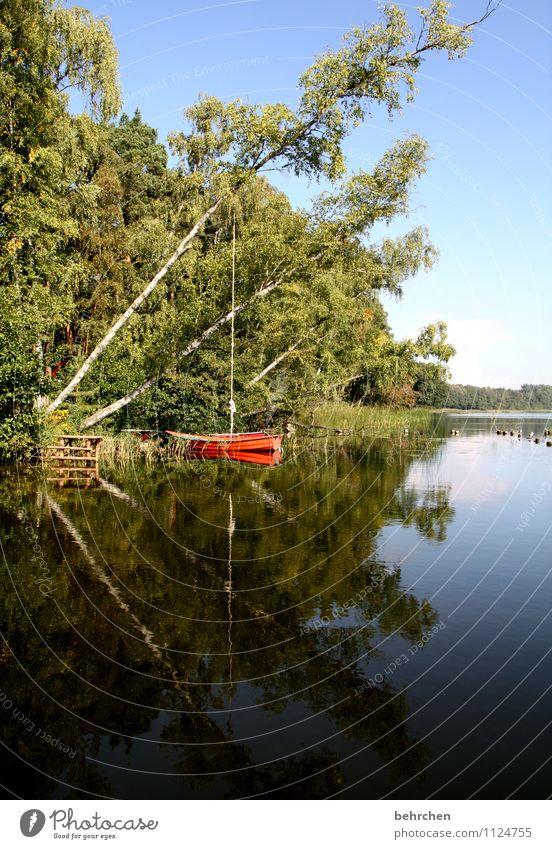 der spiegel deiner selbst Ferien & Urlaub & Reisen Ausflug Natur Landschaft Wasser Wolkenloser Himmel Frühling Sommer Herbst Schönes Wetter Baum Sträucher