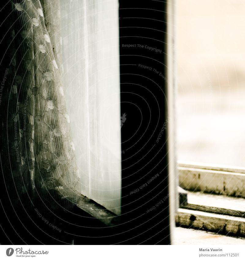 unbunt Fenster Aussicht Verfall Haus Gebäude Demontage Raum Holz Ruine verfallen dunkel Fensterrahmen Gardine grau vergilbt lüften Windzug alt window
