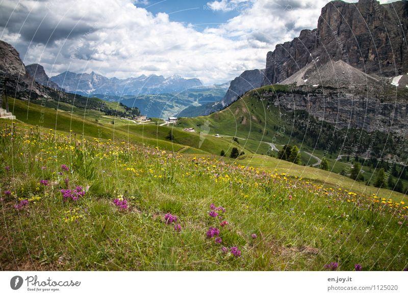 zwischendrin Himmel Natur Ferien & Urlaub & Reisen Sommer Landschaft Wolken Berge u. Gebirge Frühling Wiese Felsen Tourismus Wetter wandern Idylle Blühend Abenteuer