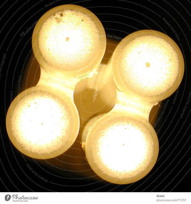 Egergiesparlampe Lampe Licht Dinge Energiewirtschaft