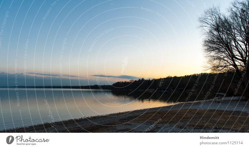 Seensucht mit Baum und Bank Umwelt Natur Landschaft Himmel Wolken Horizont Winter Schönes Wetter Wald Seeufer Strand Ammersee Stein Sand blau gold orange Liebe