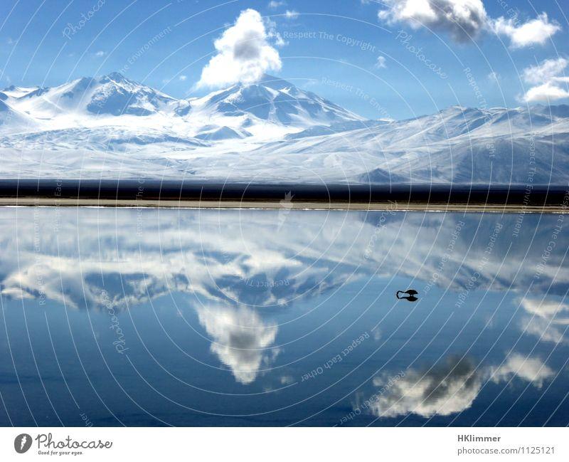 Laguna Santa Rosa Himmel Natur schön Wasser Erholung Einsamkeit Landschaft ruhig Wolken Tier Ferne Berge u. Gebirge Küste Freiheit See Horizont