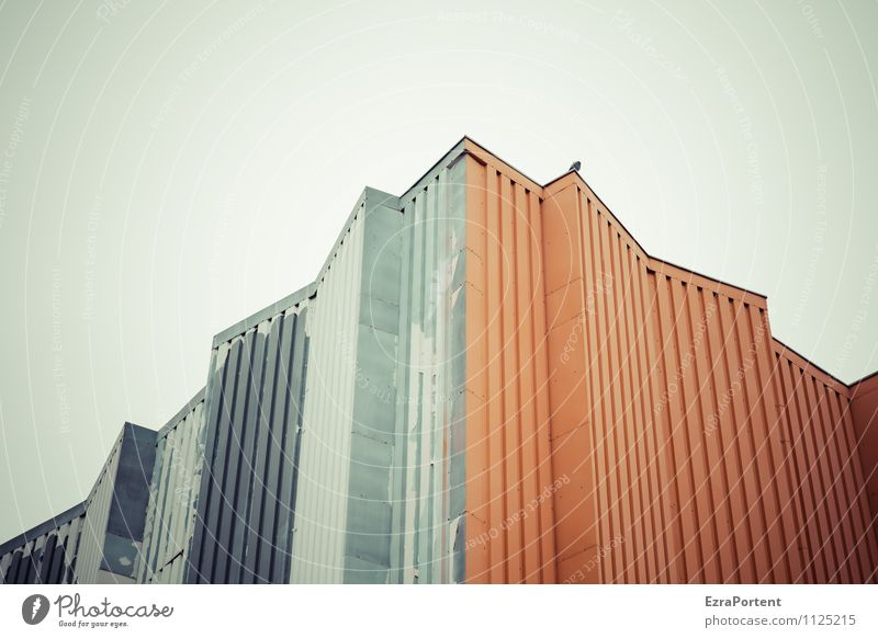 alles nur Fassade Himmel Stadt Farbe Haus Tier Wand Architektur Gebäude Mauer grau Linie Vogel Metall orange Design