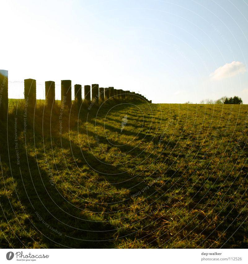 Grenzwertig Wiese Zaun Licht dunkel Belichtung Feld Mauer Schlaufe Draht Rasen palisaden Himmel Stein Schatten