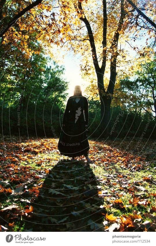 Waldgeist Herbst Hexe Blatt grün rot Frau Kleid Fee Schatten Farbe mehrfarbig