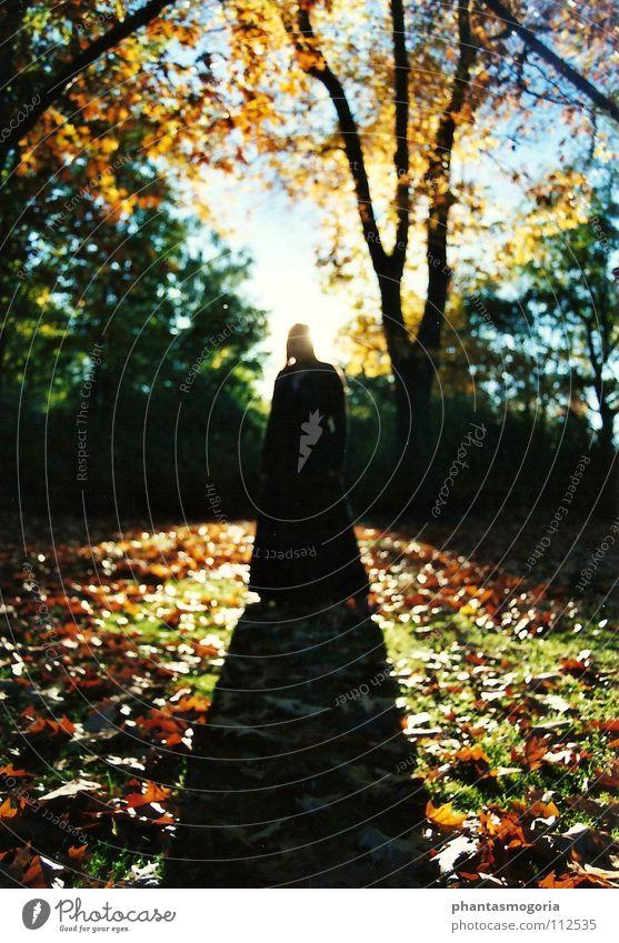 Waldgeist Nummer 2 Frau Mensch Natur Baum Sonne grün rot Blatt Erholung Herbst träumen Park Stimmung Erwachsene