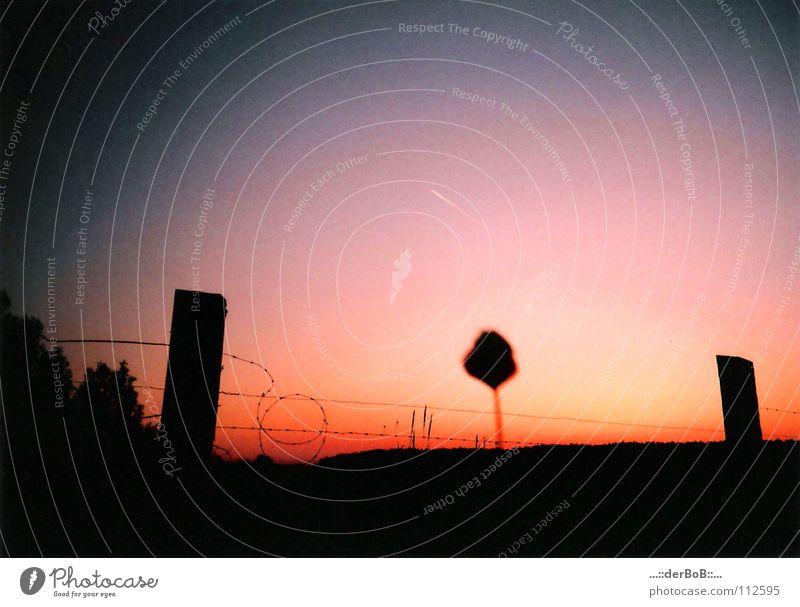 Idylle Himmel Natur Pflanze Sommer Landschaft ruhig schwarz Ferne Umwelt Wärme Wiese träumen Stimmung Kunst orange Feld