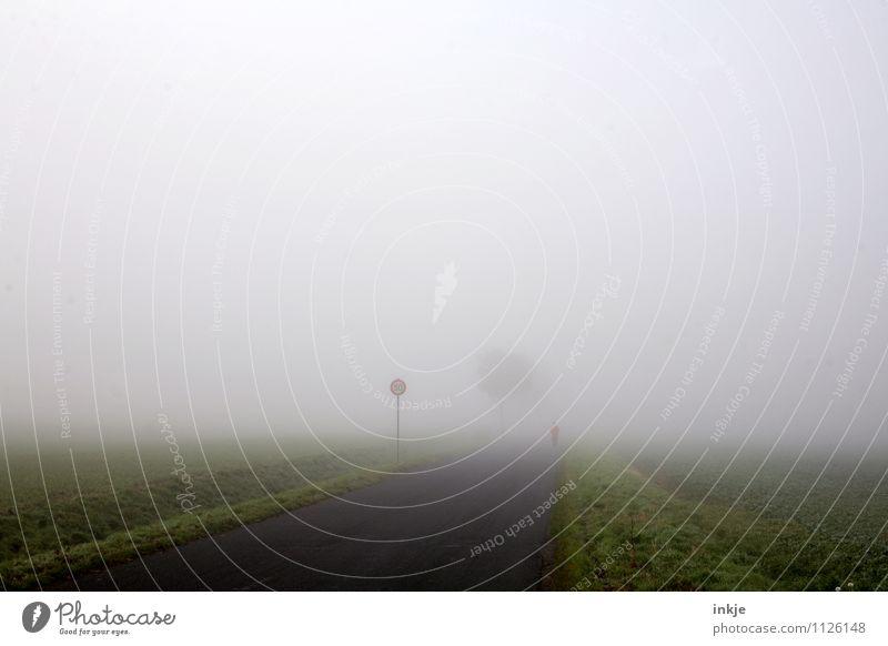 bei Wind und Wetter Himmel Natur Baum Einsamkeit Landschaft dunkel kalt Straße Bewegung Frühling Herbst Wege & Pfade Sport Gesundheit Lifestyle