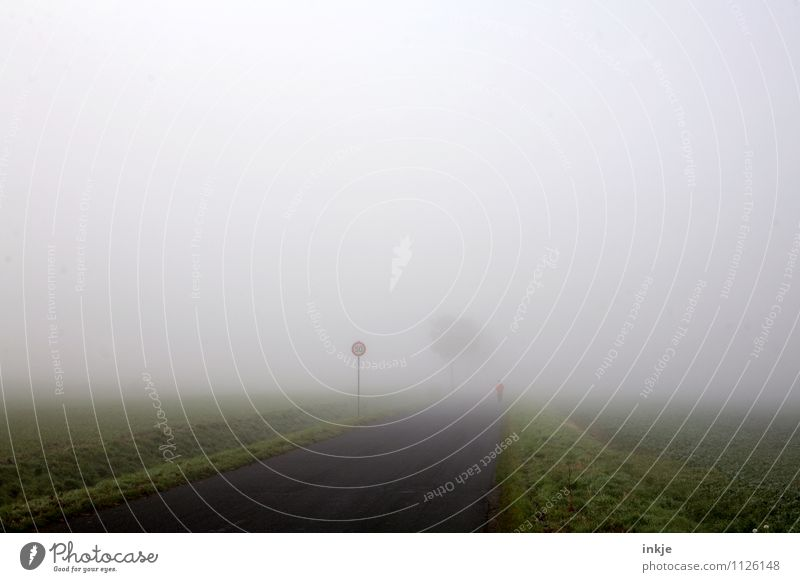 bei Wind und Wetter Lifestyle Sport Fitness Sport-Training Sportler Joggen Natur Landschaft Luft Himmel Frühling Herbst Klima schlechtes Wetter Nebel Baum Feld