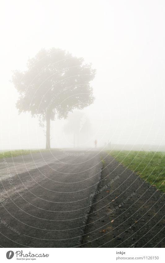 für einen Moment verschwinden Mensch Natur Baum Landschaft Umwelt Leben Bewegung Frühling Herbst Sport Gesundheit Lifestyle Wetter Luft Freizeit & Hobby Feld