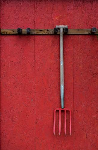 Rot auf Rot. alt rot Wand Gefühle Mauer Arbeit & Erwerbstätigkeit Kraft authentisch Erfolg ästhetisch Spitze Coolness Landwirtschaft Dorf Leidenschaft