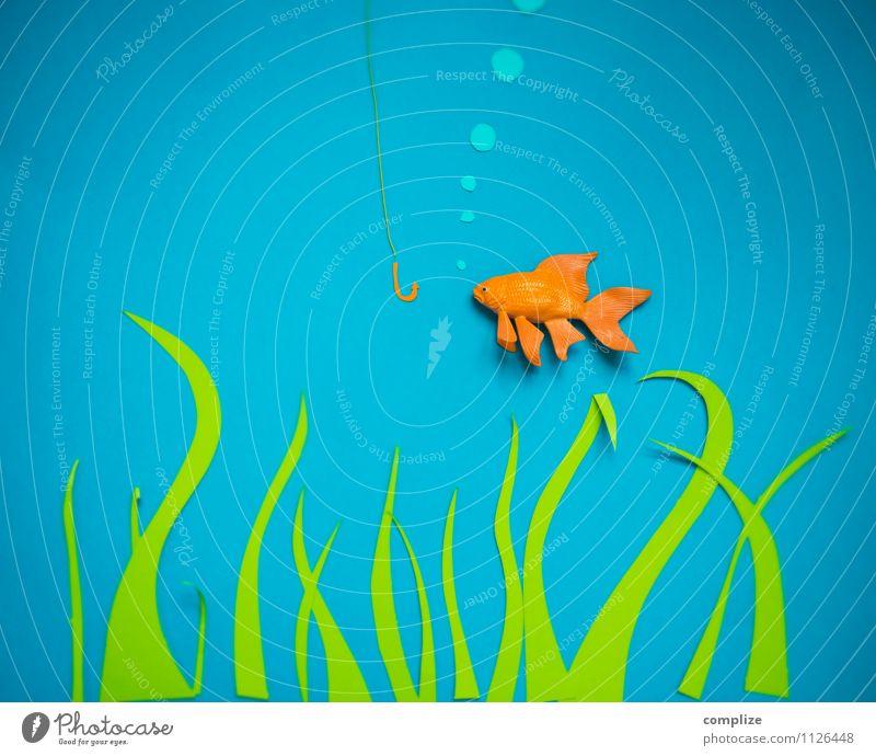 700* ein Fisch namens Wurstbrot Ernährung Sushi Expedition Gastronomie Kunst Kunstwerk Umwelt Natur Urelemente Wasser Pflanze Korallenriff See Bach Fluss Tier