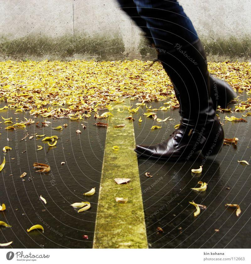 signalfarbe_01 Frau Wasser Blatt Erwachsene gelb Herbst grau Wege & Pfade springen Fuß Regen Schilder & Markierungen nass Beton Jeanshose Asphalt