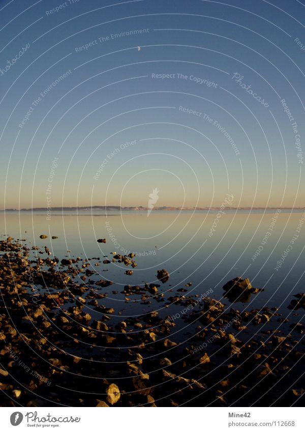 Limfjord Meer Vollmond ruhig Strand Winter Küste Himmelskörper & Weltall Fjord Mond Klarheit Stein Dänemark Norden
