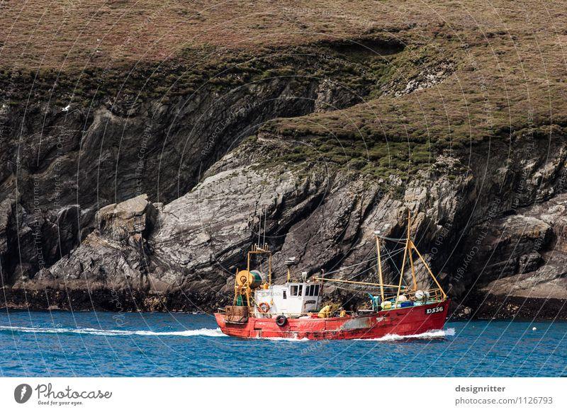 Rauhbein blau Wasser Meer rot Senior Küste Felsen Arbeit & Erwerbstätigkeit Wellen Ernährung Fisch Bucht Schifffahrt bizarr Fischereiwirtschaft Atlantik