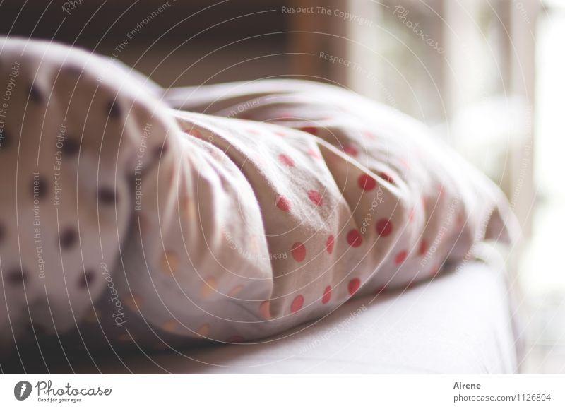 noch ein Viertelstündchen weiß Wärme Innenarchitektur braun rosa Wohnung Raum Dekoration & Verzierung Häusliches Leben Warmherzigkeit weich schlafen Punkt Bett