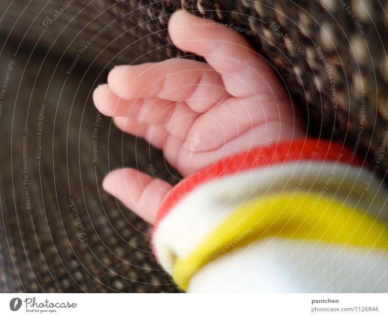 Hand eines neugeborenen Babys in gelb weißem Pulli liegt auf einem Sofa Finger 0-12 Monate liegen klein Streifen Pullover Stoff ruhig orange Hautfalten
