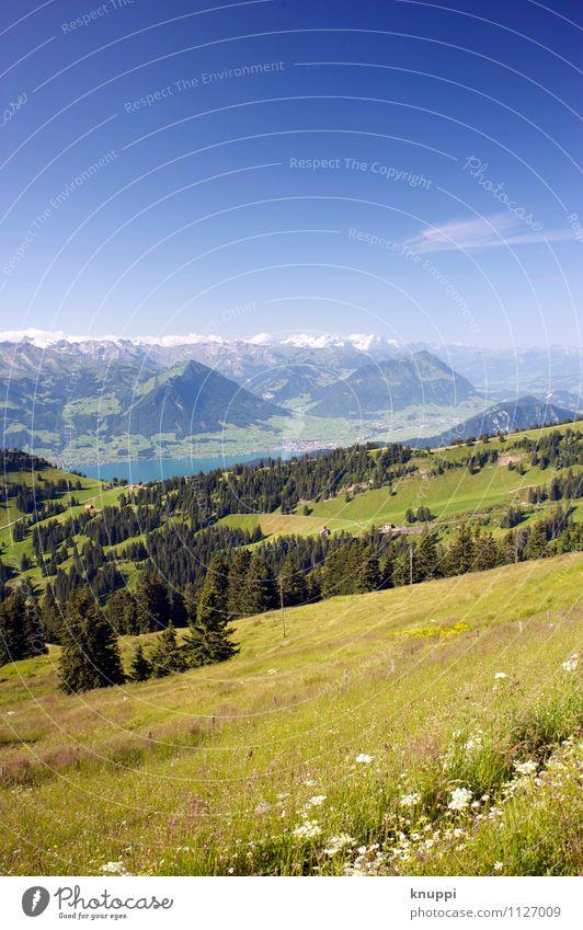 Switzerland Himmel Natur blau Pflanze grün Sommer Wasser Sonne Baum Landschaft Blatt Wald Berge u. Gebirge Umwelt Wärme Blüte