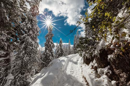 Geht los Himmel Ferien & Urlaub & Reisen schön Sonne Landschaft Wolken Winter Wald kalt Berge u. Gebirge Wege & Pfade Schnee hell Wetter Idylle wandern
