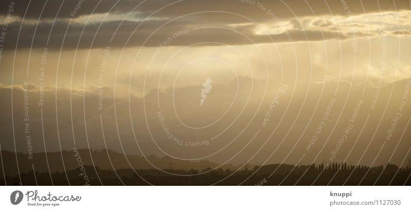 gold Umwelt Natur Landschaft Pflanze Urelemente Luft Himmel Wolken Horizont Sonne Sonnenaufgang Sonnenuntergang Sonnenlicht Sommer Herbst Klima Klimawandel
