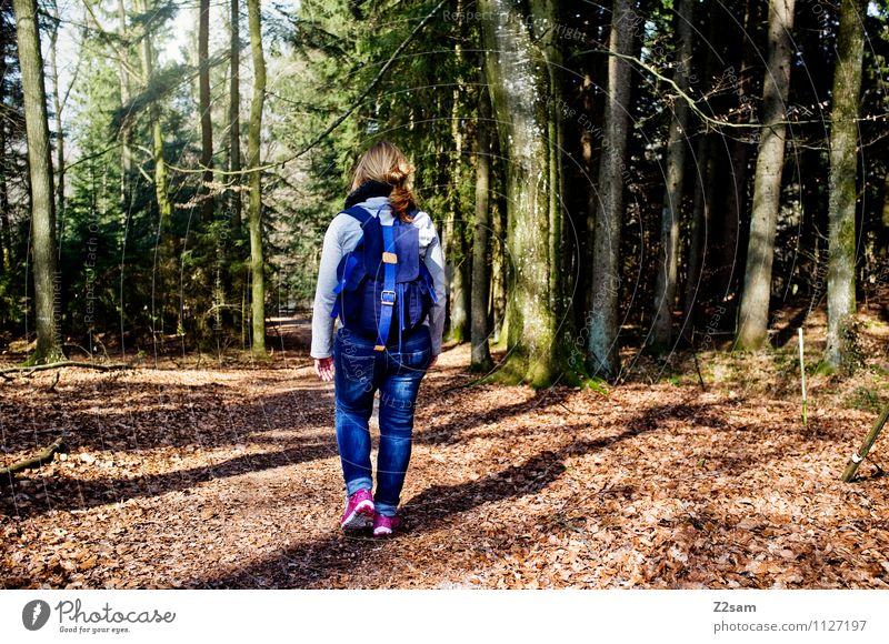 Wandertag Natur Ferien & Urlaub & Reisen Jugendliche Sommer Junge Frau Baum Erholung Landschaft ruhig 18-30 Jahre Wald Erwachsene Umwelt Herbst Bewegung
