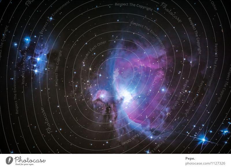 Orionnebel Natur Luft Himmel Wolkenloser Himmel Nachthimmel Stern Horizont Winter schlafen außergewöhnlich glänzend Glück Unendlichkeit blau rosa Zufriedenheit