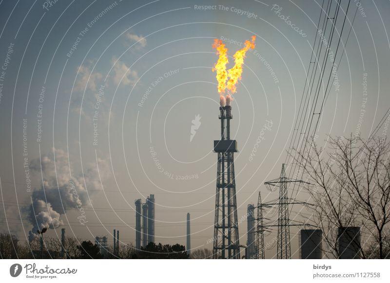 abfackeln Himmel Baum leuchten bedrohlich Industrie Brand Rauchen Strommast Abgas brennen Flamme Schornstein Umweltverschmutzung gigantisch Industrieanlage