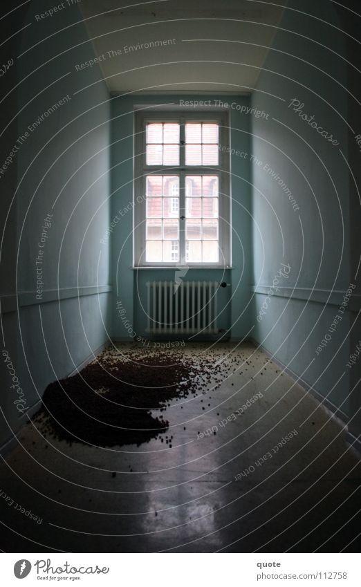 Stillleben ohne Blumen Fenster Granulat dunkel Zerstörung Vandalismus schwarz weiß Licht stilllegen trist geheimnisvoll leer verteilt chaotisch verfallen Erde