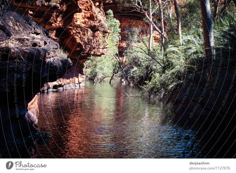 Garden Eden Natur weiß Sommer Wasser rot ruhig Freude außergewöhnlich Stein Felsen Freizeit & Hobby authentisch Sträucher Lächeln Ausflug genießen