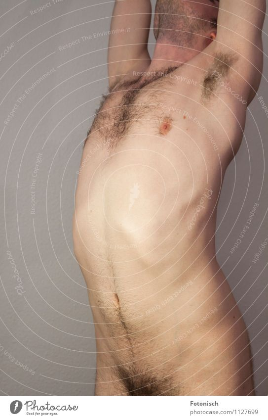 Rumpf Mensch maskulin Junger Mann Jugendliche Brust Bauch Oberkörper Achsel Schambereich 1 18-30 Jahre Erwachsene Bart Brustbehaarung Schamhaare dünn nackt