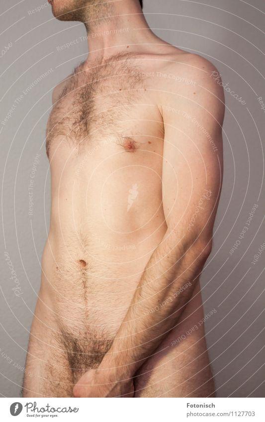 männlich Mensch maskulin Junger Mann Jugendliche Brust Bauch Oberkörper Schambereich 1 18-30 Jahre Erwachsene Brustbehaarung Schamhaare stehen ästhetisch Erotik