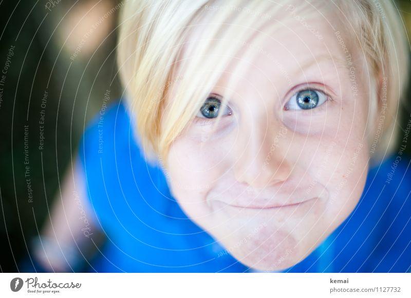 Blonder Junge schaut frech in Kamera Mensch maskulin Kind Leben Kopf Auge 1 3-8 Jahre Kindheit Haare & Frisuren blond Lächeln Blick Fröhlichkeit lustig niedlich