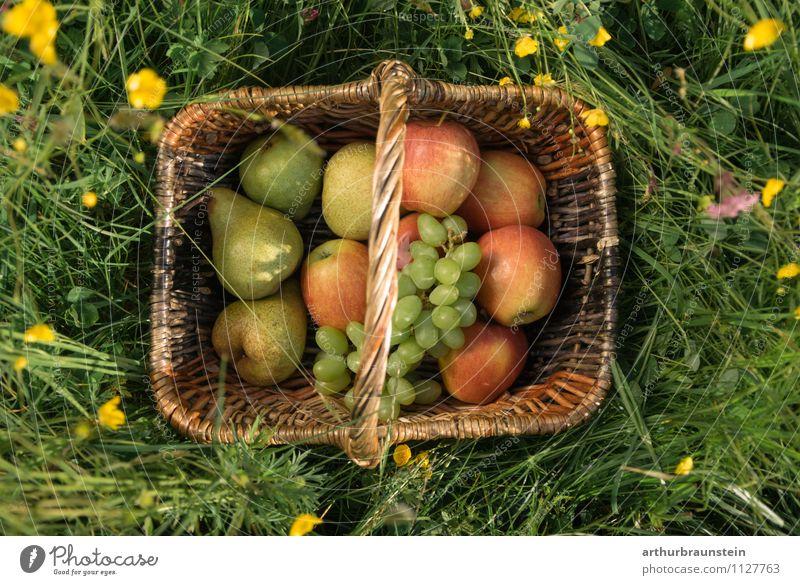 Obstkorb in der Wiese Frucht Apfel Weintrauben Birne Ernährung Picknick Bioprodukte Vegetarische Ernährung Slowfood kaufen Gesunde Ernährung Ausflug Sommer