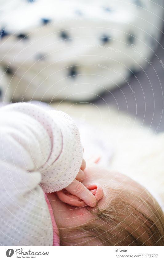 Ellie #2 Mensch schön weiß ruhig feminin grau Haare & Frisuren hell Kopf träumen frisch Kindheit blond Baby Finger weich