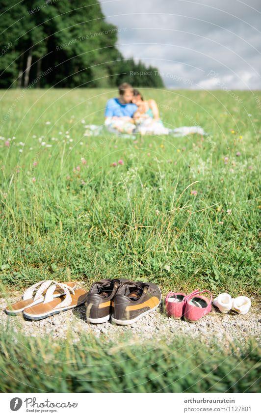 Picknick in der Sonne Mensch Kind Natur Jugendliche Junge Frau Wolken Junger Mann Mädchen 18-30 Jahre Wald Erwachsene Leben feminin Gras Glück Freiheit