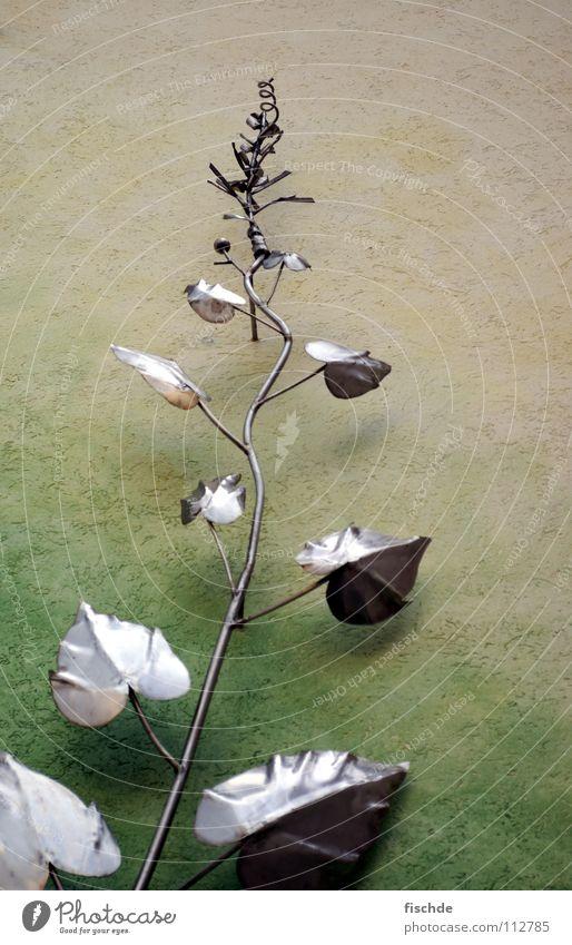 das streben nach.. Wand Haus Dachgiebel Pflanze Kletterpflanzen Efeu grün Wachstum Reifezeit Eisen verjüngen Blatt Mauer Kunst Putz Kunsthandwerk rankel Metall
