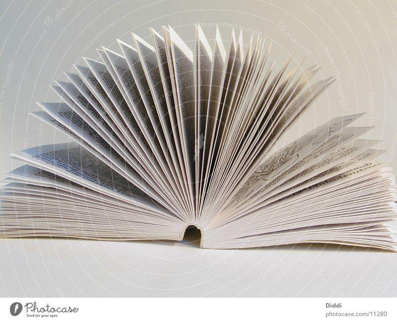 Buchseiten Blatt Dinge Seite