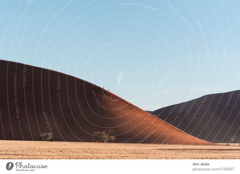 Namib Desert Sossusvlei Natur Landschaft Erde Sand Wolkenloser Himmel Klima Klimawandel Schönes Wetter Wildpflanze Hügel Wüste Namibia entdecken wandern heiß