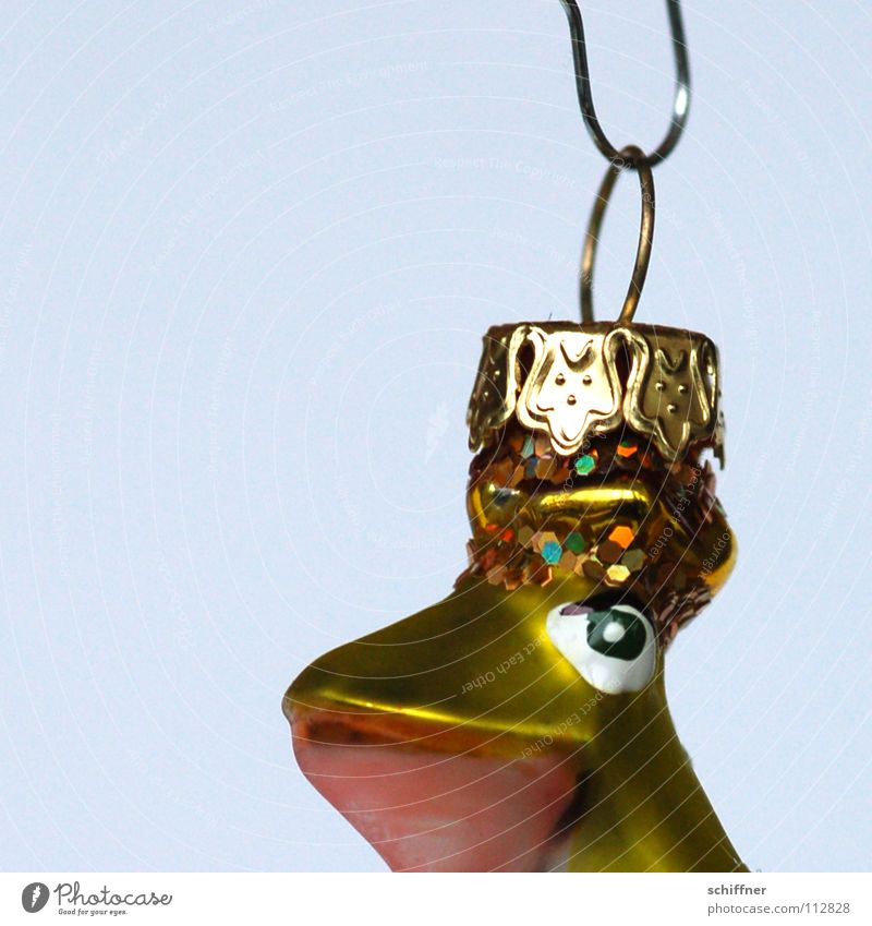 Froschkönigin schön lustig glänzend Kitsch Christbaumkugel Anschnitt Bildausschnitt Haken aufhängen Krone Weihnachtsdekoration Krimskrams Baumschmuck
