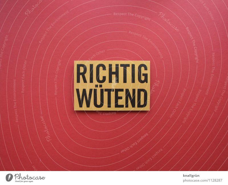 RICHTIG WÜTEND Schriftzeichen Schilder & Markierungen Kommunizieren Aggression eckig Wut gelb rot schwarz Gefühle Stimmung Ärger Feindseligkeit Frustration Hass