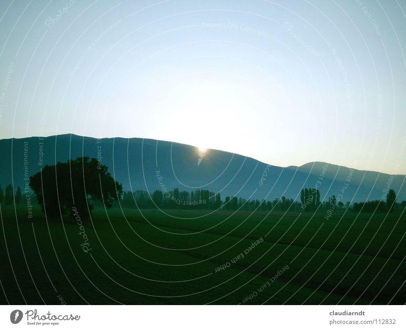 Morgenstimmung Sonnenaufgang aufwachen aufstehen Feld Aussicht Ferne Hügel Assisi Italien frisch grün Baum Wiese Berge u. Gebirge Morgendämmerung Seil