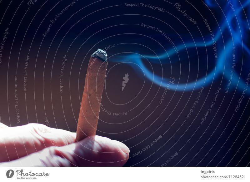 Blauer Dunst Gesundheit Gesundheitswesen Krankheit Rauchen Hand Finger Zigarette Zigarettenrauch blau braun Willensstärke gefährlich Sucht schädlich Zigarillo