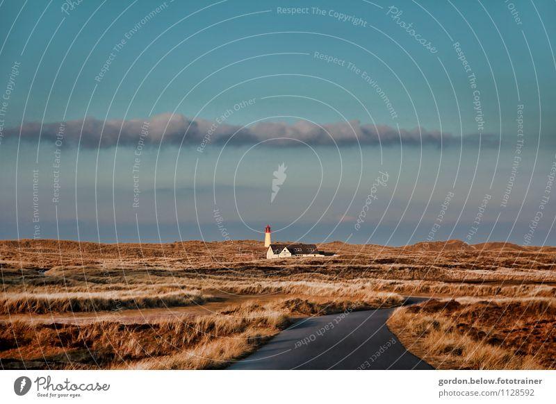 Sylt, am Ellenbogen Umwelt Natur Landschaft Pflanze Himmel Wolken Herbst Gras Küste Meer Insel Menschenleer Leuchtturm Straße Wege & Pfade blau braun gelb