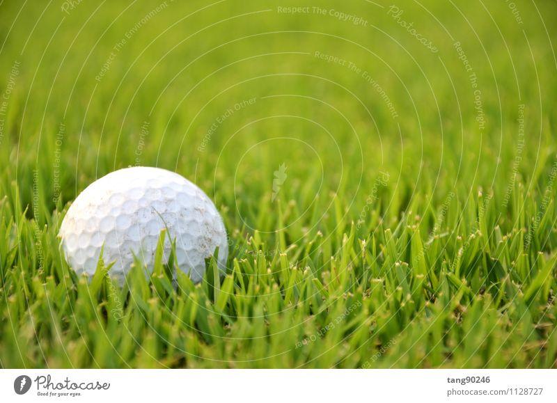Schmutziger Golfball auf dem Rasen mit grünem Hintergrund Erholung Freizeit & Hobby Spielen Entertainment Sport Erde Kugel dreckig weiß Konkurrenz Ball T-Stück