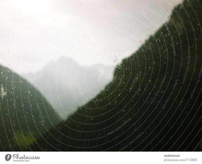 regenwald Wald grün grau mystisch Baum Panorama (Aussicht) Regen Sommer Wolken wandern Berge u. Gebirge Alpen Sonne Deutschland Ferne Perspektive Seil