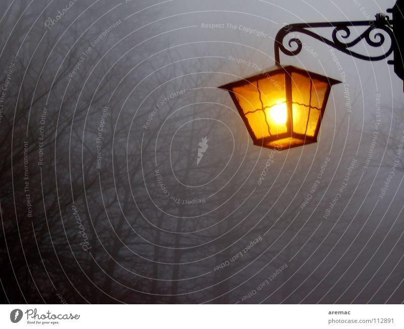 Heimleuchte Lampe Nebel Heidelberg Stimmung Licht Vertrauen Herbst Königstuhl Landschaft Abend